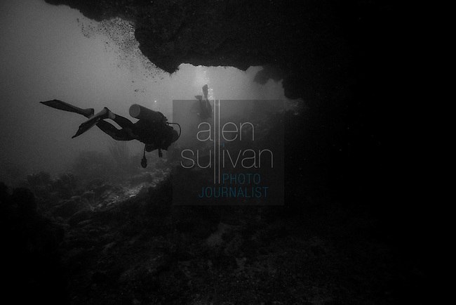 Roatan Scuba Scenics in Black and White