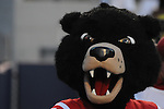 Rebel the Bear mascot at Ole Miss vs. Central Arkansas at Vaught-Hemingway Stadium in Oxford, Miss. on Saturday, September 1, 2012. Ole Miss won 49-27.