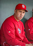2 March 2013: St. Louis Cardinals right fielder  Carlos Beltran sits in the dugout prior to a Spring Training game against the Washington Nationals at Roger Dean Stadium in Jupiter, Florida. The Nationals defeated the Cardinals 6-2 in their first meeting since the NLDS series in October of 2012. Mandatory Credit: Ed Wolfstein Photo *** RAW (NEF) Image File Available ***