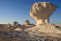 Weird rock formations sprout from the White Desert