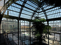 Plant History Glasshouse (formerly Australian Glasshouse), 1830s, Rohault de Fleury, Jardin des Plantes, Museum National d'Histoire Naturelle, Paris, France. High angle view of a corner of the glasshouse, lit by the afternoon sun, where a Podocarpus Elongata plant from South West Africais growing. Through the windows the New Caledonia Glasshouse (formerly Mexican Hothouse), 1834, Charles Rohault de Fleury, is visible, with the main Avenue of the Jardin des Plantes and the Paris skyline in the background.