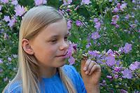 Mädchen, Kind riecht an Malve, Rosen-Malve, Rosenmalve, Simarskraut, Malva alcea, Cut Leaved Mallow