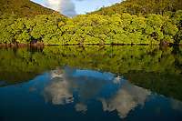 Cloud reflection in the bay at Borck Creek<br />