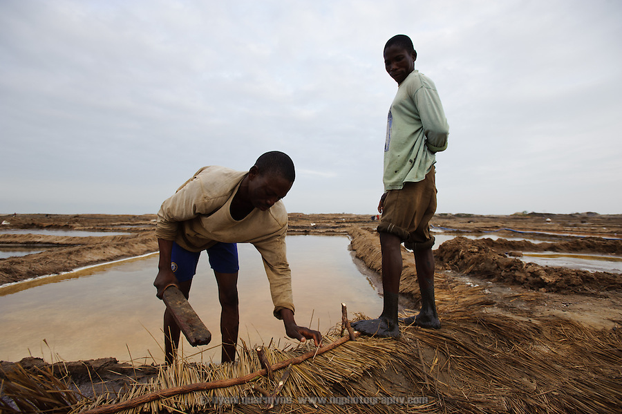 """Atsiakpo"" workers reinforcing the low earthhen dikes between pans with thatch to prevent them eroding as people walk between pans. Lacking the multiple evaporation stages of industrial production, the salt produced in pans such as these is less pure."