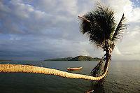Thailand, Koh Samui, palm tree by sea, sunset (Licence this image exclusively with Getty: http://www.gettyimages.com/detail/200339742-001 )