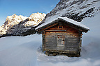 Mountain hut in the winter snow near Grindelwald - Swiss Alps - Switzerland