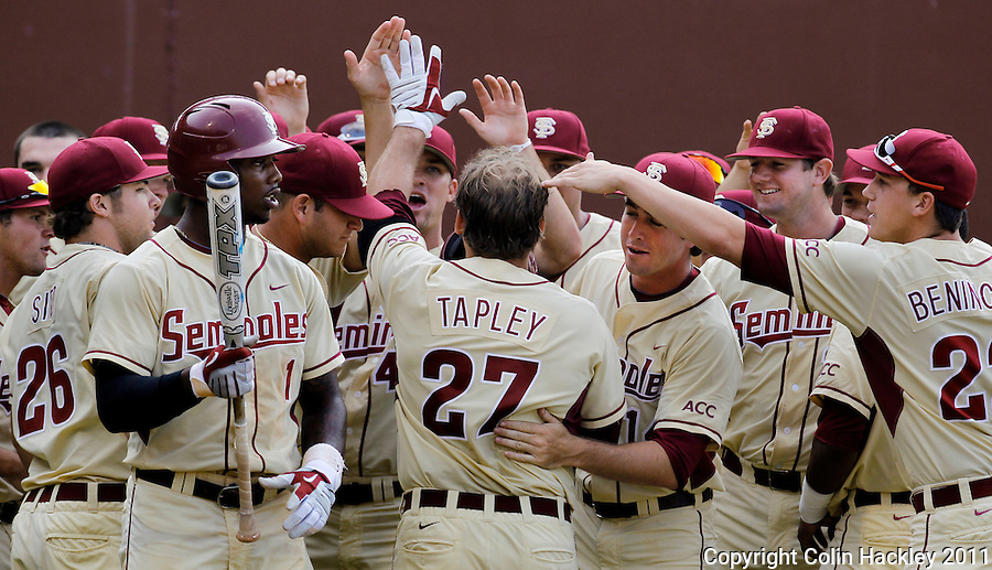 TALLAHASSEE, FL 10-FSU-TAMUBASE11 CH-Florida State's Stuart Tapley, center, celebrates after hitting a two-run homer in the third inning against Texas A&M's Sunday at Dick Howser Stadium during NCAA Super Regional action in Tallahassee. The Seminoles beat the Aggies 23-9 to stay alive in the best of three series...COLIN HACKLEY PHOTO