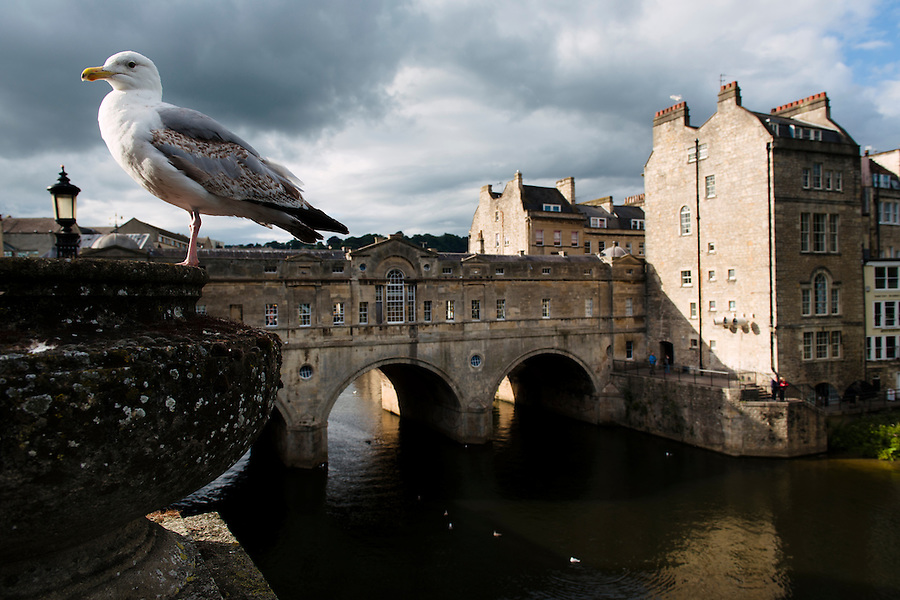 Pulteney Bridge, Bath, UK, July 28, 2015. The UNESCO World Heritage city of Bath is famed for its hot spa that dates back to Roman times and for its Georgian architecture. For much of its history the city has been a popular holiday resort. It is the only hot spa in the UK.