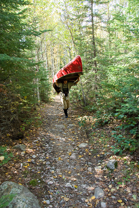 Portaging a red canoe through the woods in the Boundary Waters Canoe Area Wilderness in Northern Minnesota.