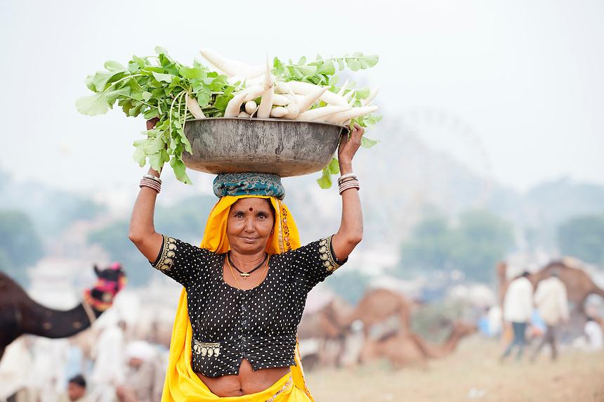 [Image: Pushkar3814.jpg]