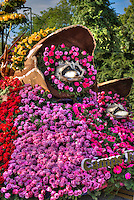 Lions 2016 Float <br /> &quot;Camps for All Abilities&quot; Rose Parade, Floats, Pasadena Ca,  New Year's Day Tournament of Roses Parade, flower-decorated floats are required to be covered with plant material, living or dead. Visit http://david-zanzinger.artistwebsites.com/ for galleries