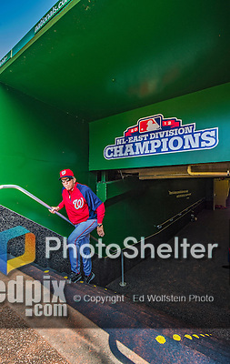 8 June 2013: Washington Nationals Manager Davey Johnson walks up the steps from the clubhouse into the dugout prior to a game against the Minnesota Twins at Nationals Park in Washington, DC. The Twins edged out the Nationals 4-3 in 11 innings. Mandatory Credit: Ed Wolfstein Photo *** RAW (NEF) Image File Available ***