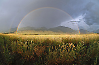 Double Rainbow, Grassland, and the Absaroka Range.Pray, MT