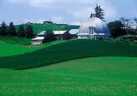 Round barn in the Palouse region. Pullman,  Whitman County, WA