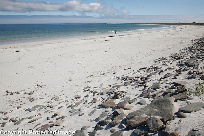 Whitemill Bay Beach, Sanday; Orkney Islands; Scotland