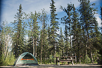 Our campsite at Riley Creek Campground, just inside the park entrance.