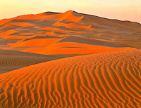 Dunes in the Empty Quarter, 1,000 mile area of dunes and desert, not crossed until 20th century, Arabian Peninsula, Sultanate of Oman