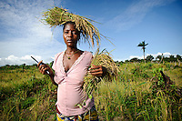 Planting Promise, Sierra Leone