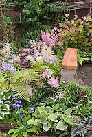 Garden bench, Astilbe, hosta, Brunnera King's Ransom, Athyrium nipponicum var pictum, Tradescantia, firewood cut logs, woven fence, spring garden flowers and perennials