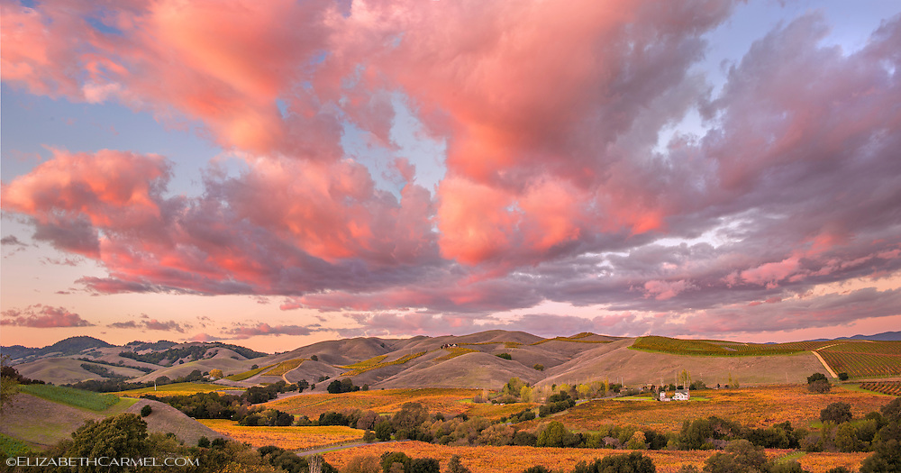 Wine Country Sunset