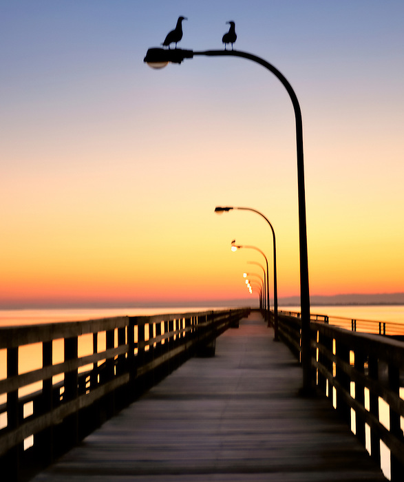 Pre Dawn Meeting - along the pier at sunrise at Captree State Park, Fire Island