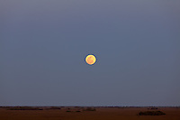 The so-called super moon -- a full moon on the date of the moon's closest annual approach to Earth -- as seen from the observation tower in the Shark Valley section of Everglades National Park, Florida on May 5, 2012.