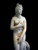 2nd century AD Roman marble sculpture of Aphrodite (Venus), 'Dresden Capitoline Type, copied from a Hellanistic Greek original,  inv 6238, Museum of Archaeology, Italy, black background