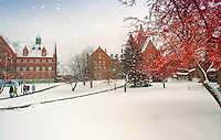 Williams and Old Mill, Winter UVM Campus