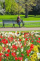 Regents Park in bloom