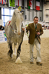 Shire Horse Society Spring Show 2010<br />