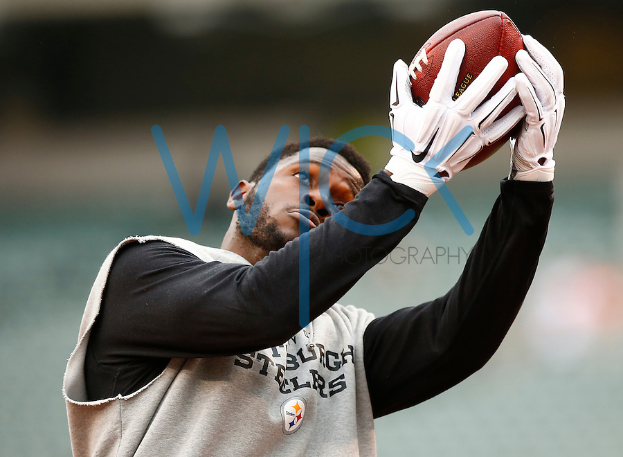 Antonio Brown #84 of the Pittsburgh Steelers warms up prior to the game against the Cincinnati Bengals at Paul Brown Stadium on December 12, 2015 in Cincinnati, Ohio. (Photo by Jared Wickerham/DKPittsburghSports)