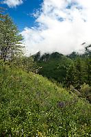Impressions of the Chisone valley around Pragelato in the Piedmont region (Italy, 16/06/2010)