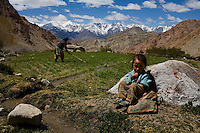 While her daughter, Dolka plays nearby, on 2nd June 2009, Yangchan Tsering irrigates the fileds next to her house, one of only 3 houses scattered on one side of the Valley of Ulley. Ulley Valley is a valley with a scattered village of only 5 houses, one school, 38 people, 4 school children, and 4 pet dogs. The village is not accessible by road. The valley of Ladakh is located in the Indian Himalayas, in the northern state of Jammu and Kashmir. Photo by Suzanne Lee