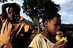 GALUFU, MALAWI OCTOBER 16: Unidentified children eat mangoes on October 16, 2005 in Galufu, Malawi. The children trough stones in the trees or climb them to reach the mangoes. Most people in the village are poor and hungry, and cannot afford to buy maize at the market. The price is twice as much as the government subsidized prices. The government used to sell subsidized maize and fertilizer but not anymore. Many in the village eat mangoes and even boil unripe ones, as they cannot afford to buy anything else. The harvest was very bad in 2005 and the next one, due in April 2006 I uncertain because of lack of rains and drought. The village has seen an increase in poverty the last few years due to drought and HIV/Aids. Southern Africa has been hit by a severe hunger crisis due to drought and poverty. An ever-increasing HIV/Aids rate adds to the misery. Malawi is one of the worst hit areas and Galufu village is a typical small village that has become victim of this poverty spiral. (Photo by Per-Anders Pettersson)