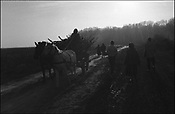 ILLEGALLY COLLECTING WOOD FROM THE FOREST. SINTESTI, ROMANIA. NOVEMBER 1996..©JEREMY SUTTON-HIBBERT 2000..TEL./FAX. +44-141-649-2912..TEL. +44-7831-138817.
