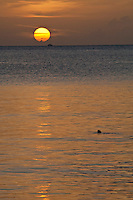 Sunset at Maho Bay with a turtle surfacing for air<br />