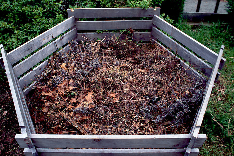 Composting in wooden bin with garden refuse