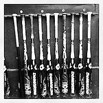 Wofford's bats. (Tom Priddy/Four Seam Images)