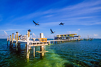 double-crested cormorant or Florida cormorant, Phalacrocorax auritus floridanus, and wood stilt house on sand banks of Safety Valve, Stiltsville, Miami, Biscayne National Park, Florida, USA, Atlantic Ocean