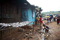 Selling fish in Kibera slum, outside Nairobi. Kibera is the largest slum in Kenya and the second largest in Africa, with an estimated population of over 1 million people.