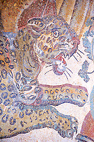 Tiger mosaic. Roman mosaics at the Villa Romana del Casale which containis the richest, largest and most complex collection of Roman mosaics in the world. Constructed  in the first quarter of the 4th century AD. Sicily, Italy. A UNESCO World Heritage Site.
