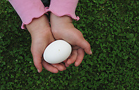 A child shows off a chicken egg from her backyard coop in Palmer, Alaska.