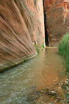 The East Fork of the Virgin River hits a sharp corner in Parunuweap Canyon.<br /> Zion National Park, UT