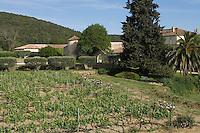 Europe/Provence-Alpes-Côte d'Azur/83/Var/env de Saint-Tropez/ Gassin : Domaine Barbeyrolles -AOC Côtes de Provence