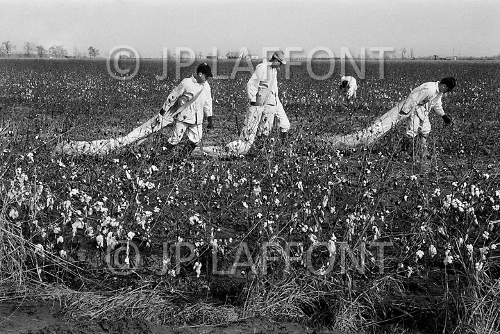Cummings, AR. February 1968.<br /> Prisoners pick cotton on the farm at the Cummins unit of Arkansas State Penitentiary. The corruption scandal of the historical penitentiary inspired the 1980 film Brubaker, which chronicled the warden's inside investigation into the corrupt southern prison system.