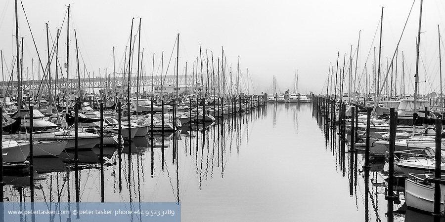 Early morning fog at Westhaven Marina.  Auckland harbour bridge in background.