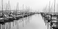 Early morning fog at Westhaven Marina.  Auckland harbour bridge in background.g