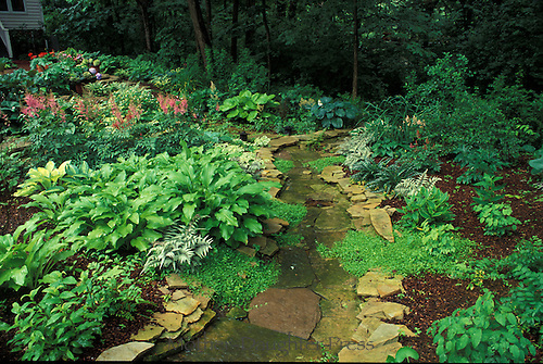 stone path through lush shade garden