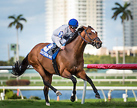 HALLANDALE BEACH, FL - MARCH 04: HEART TO HEART, #3, ridden by Julien Leparoux, wins the 51st running of the Canadian Turf (Grade III) at Gulfstream Park Race Course on March 4, 2017 in Hallandale Beach, Florida. (Photo by Samantha Bussanich/Eclipse Sportswire/Getty Images)