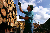 A logger unloads a truckload of timber at Gilman Paper Company in St. Mary's, Georgia. <br />